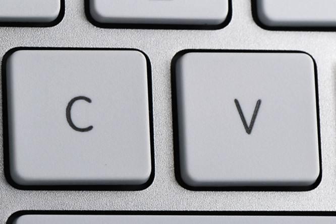Bemka Eğitim CV Formu